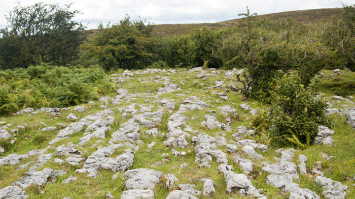 Cuilcagh Mountain Limestone Pavement