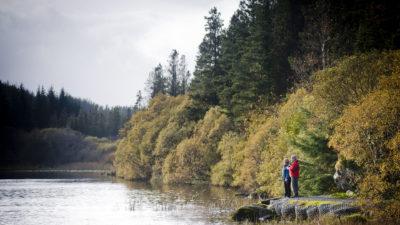 Lough Navar Forest