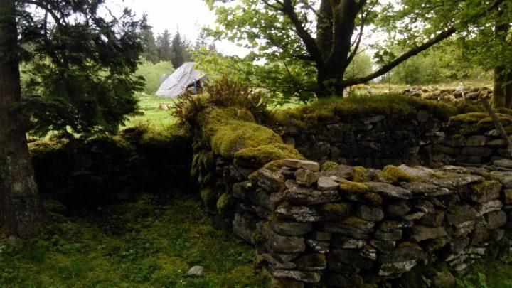 Cavan Burren Park   Calf House