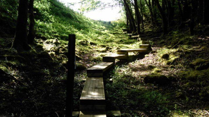 Cavan Burren Park   Giant's Leap Trail