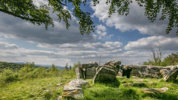 Cavan Burren Park Path