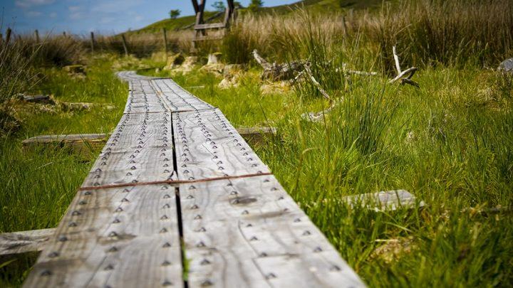 Cavan Burren Park   Photo Credit   Dmitrijs Germanovs
