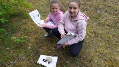 Forest schools grow new beginnings in Fermanagh and Omagh