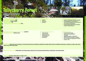 Tullychurry Forest Information Sheets